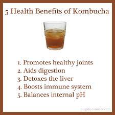 komucha benefit 2